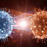 dünyada görülen virüs türleri